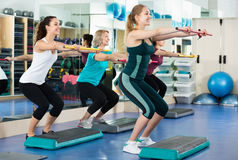 Females working out on aerobic step platform in modern gym Stock Image