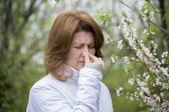 Femelle adulte avec la rhinite allergique au sujet des fleurs de cerisier Images libres de droits