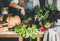 Femelle dans le tablier coupant de divers ingrédients végétaux sur le compteur photographie stock libre de droits