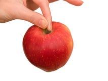 Femelle de main avec une pomme image libre de droits