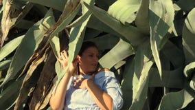 Femelle emprisonnée à l'intérieur de l'agave d'og clips vidéos