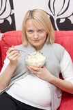 Femelle enceinte Image stock