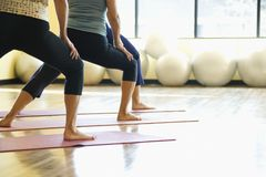 Femelles adultes dans la classe de yoga. Photos libres de droits