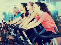 Femelles s'exerçant sur des vélos d'exercice Photographie stock