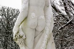 Feminine buttocks under the snow Royalty Free Stock Photography