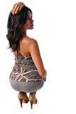 Feminine curves. Beautiful brunette posing for backside portrait Royalty Free Stock Photography