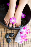 Feminine feet in foot spa bow Royalty Free Stock Photography