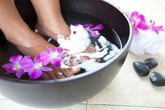 Feminine feet in foot spa bowl Royalty Free Stock Image