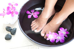 Feminine feet in foot spa bowl Royalty Free Stock Photography