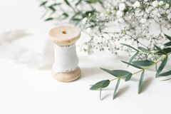 Feminine floral scene. Close-up of spool of silk ribbon, Eucalyptus parvifolia leaves and babys breath Gypsophyla. Flowers on a white table background. Wedding stock photo