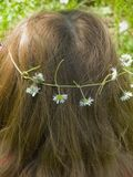Feminine hair with daisy flowers wreath Stock Photos