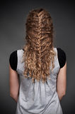 Feminine hairdo Stock Photography