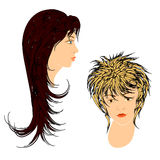 Feminine hairdos. Stock Photos