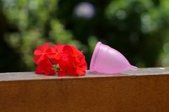 Feminine hygiene product - Menstrual cup over a wooden structure next to a beautiful red flowers, in a blurred Stock Photo
