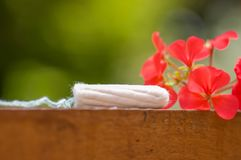 Feminine hygiene product - menstruation cotton tampon over a wooden structure with a beautiful red flower, in a blurred Stock Photography