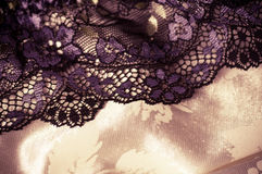 Feminine lacy underclothes background Stock Photography