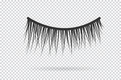 Feminine lashes vector. False eyelashes. Hand drawn Royalty Free Stock Photos