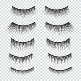Feminine lashes vector set. False eyelashes. Hand drawn Stock Image