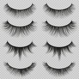 Feminine lashes vector set. Realistic false eyelashes fashion collection. Long eyelash and false femininity black eye lash illustration Stock Photography