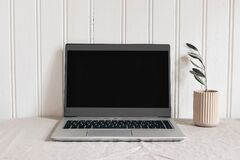 Free Feminine Modern Sparse Workspace Composition. Notebook Mock-up Scene. Pink Ceramic Vase With Olive Branch And Laptop On Royalty Free Stock Images - 173582739