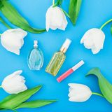 Feminine perfume, lipstick and white tulips flowers on blue background. Beauty blog. Flat lay, top view. Feminine perfume, lipstick and white tulips flowers on Stock Photos