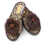Feminine slippers Royalty Free Stock Image