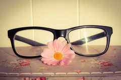 Feminine Specs. Thick rimmed glasses with a pink daisy Royalty Free Stock Image