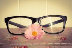 Feminine Specs Royalty Free Stock Image