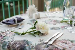 Feminine wedding or birthday table composition with white peonies on old vintage table stock photography