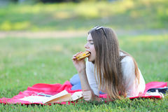 Feminine working lying in glasses in the park and food snack Royalty Free Stock Photos