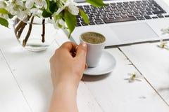 Feminine workplace concept. Freelance fashion comfortable femininity workspace  with laptop, coffee, flowers on white background stock photos