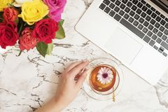 Feminine workplace concept. Freelance workspace in flat lay style with laptop, tea, flowers. Woman hand holding tea cup. Blogger w. Orking. Top view, bright royalty free stock photography