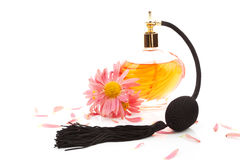 Femininity. Perfume and flower blossom. Royalty Free Stock Image