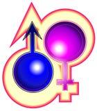 Feminism Stock Image