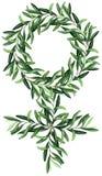 Feminizmu symbol z akwareli zielonych oliwek śniadanio-lunch ilustracja wektor