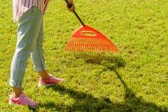Femme à l'aide du râteau pour nettoyer la pelouse de jardin Images libres de droits