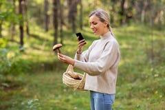 Femme à l'aide du smartphone pour identifier le champignon photos libres de droits