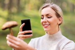 Femme à l'aide du smartphone pour identifier le champignon image stock