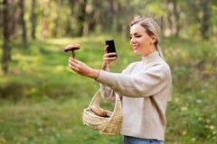 Femme à l'aide du smartphone pour identifier le champignon images stock