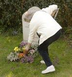Femme à la tombe Photographie stock libre de droits