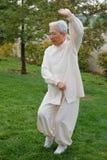 Femme âgée chinoise Taichi de exécution extérieur photographie stock