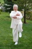 Femme âgée chinoise Taichi de exécution extérieur images stock