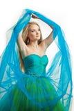 Femme élégant dans une robe bleue photographie stock