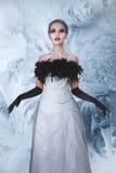 Femme élégante dans la longue robe blanche Photo stock