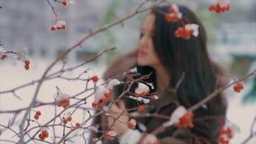 Femme élégante de brune près de buisson avec le mouvement lent de baies rouges clips vidéos