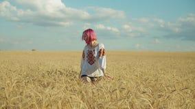 Femme élégante marchant dans le domaine de blé au coucher du soleil banque de vidéos