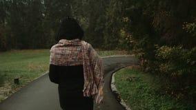 Femme élégante marchant en parc/forêt d'automne pendant le jour pluvieux, vue arrière banque de vidéos