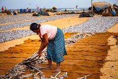 Femme étendant des poissons pour sécher sur les tapis Photographie stock libre de droits