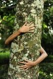 Femme étreignant un arbre dans la forêt Photo stock