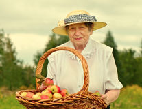 Femme aîné Photographie stock libre de droits